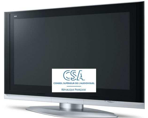 CSA économie des chaines de télévision 2007, parution 28 novembre 2008