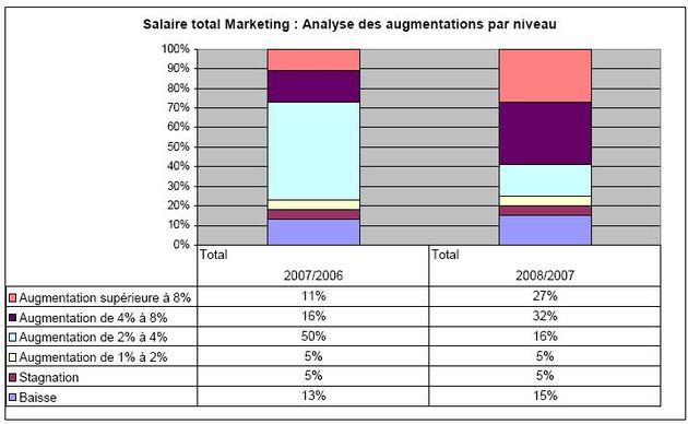 Salaires 2008 – 2009, Maesina International Search : augmentations par niveau