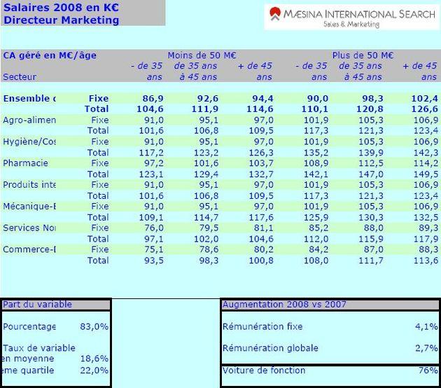 Salaires 2008 – 2009, Maesina International Search : directeur marketing