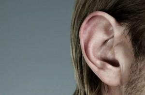 Ecouter les sens