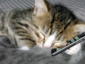 CHat sur Iphone :)