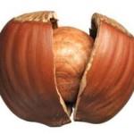 Nutella : mainmise sur le sourcing des noisettes