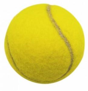 Roland Garros 2010 : bilan publicitaire