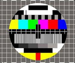 Bilna des investissements publicitaires télévision, premier semestre 2010 selon Yacast