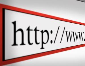 Près de la moitié  visitent les sites de marques au moins une fois par semaine. Si ceux-ci, dans une large mesure, se déclarent satisfaits de leur expérience, ils ne montrent pas pour autant d'enthousiasme débordant. Alors quels contenus attendent les internautes ? Quels sont leurs besoins  ?