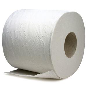 Enfin un tube de papier toilettes recyclable ou compostable !