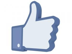 Facebook ne sert à rien... sauf à offrir aux entreprises un booster inédit en termes de visibilité, de notoriété, de collecte de leads très qualifiés et quasiment gratuite.