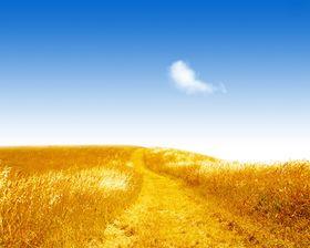 Julien Leterrier, planneur stratégique chez Valtech. Interviewé par Serge-Henri Saint-Michel. Quel est le parcours du planneur stratégique, sa formation ? Le planning stratégique est-il un nouveau golden job ?