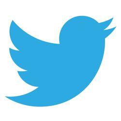 Résultats d'une enquête sur les usages et les pratiques de Twitter en France réalisée par Ipsos/CGI