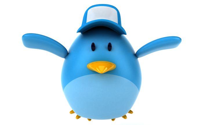 """Qui sont les twittos actifs ? Quels sont leurs usages de Twitter ? Comment font les """"influenceurs"""" pour développer leur visibilité ? Centres d'intérêt ?"""