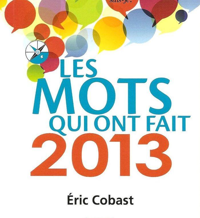 Les mots qui ont fait 2013 Eric Cobast, critique de ce livre jubilatoire utile aux concepteurs rédacteurs et planneurs stratégiques