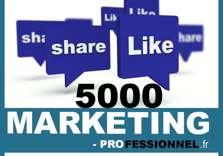 Marketing-Professionnel-5000