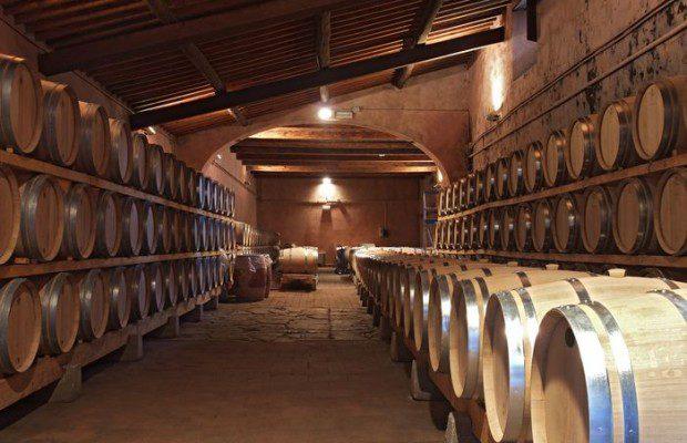 Tchin Chine ! Avant de trinquer, quels sont les dangers de l'acquisition du savoir-faire viticole français par les Chinois ?
