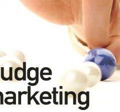 Nudge marketing : Comment changer efficacement les comportements, livre d'Eric Singler. Critique