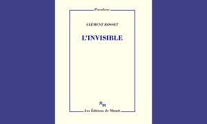 Dans L'Invisible, Clément Rosset cherche à démontrer la capacité humaine de voir ce qui n'est pas visible... et ce qui n'existe pas